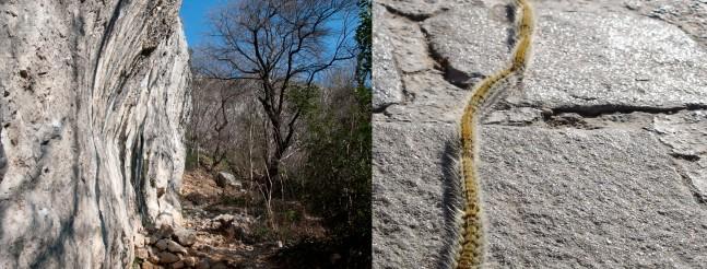 Easter Alarm | Climb Istria